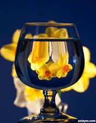 glass photography - Szukaj w Google