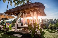 Welcome to @theviceroybali.  @mindythelion #thebalibible #balibible #theviceroybali #bali #ubud #theviceroy #ubudvillas by thebalibible