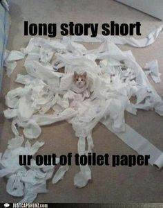 We're gonna need more TP.