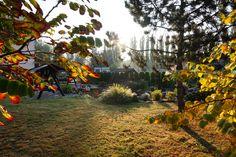 Autumn in Poland - Medical SPA -sanatorium w Ciechocinku w Polsce Medical Spa, Poland, Country Roads, Autumn, Portal, Holiday, Vacations, Fall Season, Fall