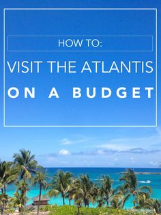 Visit The Atlantis on a Budget // Brittany from Boston