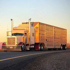 hopper bottom trucking