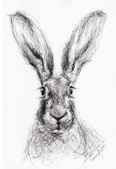 Supreme Portrait Drawing with Charcoal Ideas. Prodigious Portrait Drawing with Charcoal Ideas. Animal Paintings, Animal Drawings, Animal Sketches, Art Sketches, Charcoal Art, Charcoal Drawings, Scribble Art, Tinta China, Bunny Art