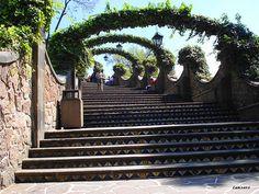 Escaleras — En el camino a la Iglesia del Cerrito, parte de la Villa de Guadalupe, en la Ciudad de México.    Stairs — On the way to the Church on the Hill, part of Guadalupe Village, in Mexico City. — lanzero, via Flickr