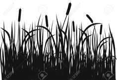 Reeds Images, Stock Pictures, Royalty Free Reeds Photos And Stock ...