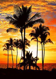 lifeisverybeautiful: Red Hot Sunset (by janruss)Hawaii