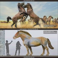 Prehistoric Wildlife, Prehistoric World, Prehistoric Creatures, Stone Age Animals, Jurassic Park World, Alien Creatures, Extinct Animals, Dinosaur Art, Fauna