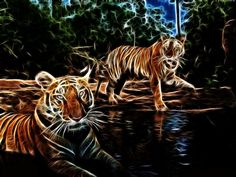 fractal tigers by 3otiko on deviantART