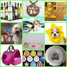 Have you placed your bid yet? There are over 150 items to choose from in our 'Christmas in July' Auction happening now thru Wednesday on our Facebook page! Visit https://goo.gl/YBHkfL now to join the fun. 100% of all funds raised will help pay for vet care of rescue dogs.
