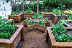 Here is a vegetable garden with four L shaped raised garden beds, as well as a star in the center. This is great orientation, and also allows the garden to have a visual appeal. Even someone that does not garden can appreciate the design of this area. Raised Garden Beds, Gardening Tips, Outdoor Spaces, Outdoor Rooms