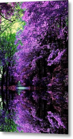 It's a beautiful world! A Japanese Garden Beautiful World, Beautiful Gardens, Beautiful Images, Beautiful Flowers, Beautiful Gorgeous, Beautiful Scenery, Pretty Pictures, Cool Photos, Amazing Pictures