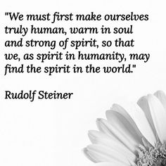 No to robotics. Positive Affirmations, Positive Quotes, Steiner Waldorf, Beautiful Prayers, Rudolf Steiner, Spiritual Wisdom, Happy Thoughts, Wisdom Quotes, Cool Words