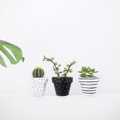 Set of 3 Monochrome Plant Pots - 6cm