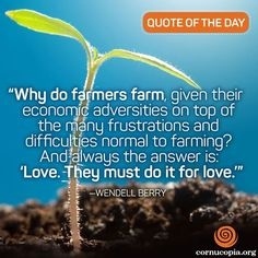 As you celebrate the holidays, give thanks to farmers! Farm Quotes, Quotes Quotes, Summer Beach Quotes, Wendell Berry, Ocean Quotes, Things About Boyfriends, Gratitude Quotes, Romantic Love Quotes, Relationship Quotes