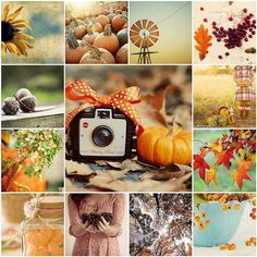 Country Autumn Collage