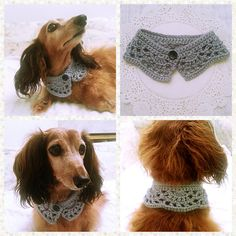 Im totally knitting both of my dogs clothes. Maybe even the cat.Crochet Dog Scarf Dog Bandana Dog Cowl Cat by KichijojiKawaii Crochet Scarves, Crochet Hats, Crocheted Scarf, Crochet For Dogs, Crochet Collar, Crochet Dog Clothes, Bandeau Crochet, Cat Scarf, Dog Sweaters