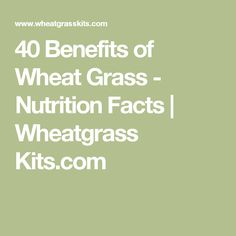 40 Benefits of Wheat Grass - Nutrition Facts | Wheatgrass Kits.com