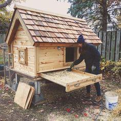 Chicken Coop Designs, Diy Chicken Coop Plans, Chicken Coop Pallets, Chicken Garden, Backyard Chicken Coops, Chickens Backyard, Backyard Farming, Hobby Farms, Pergola Designs