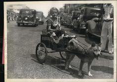 1936 Press Photo FT Lauderdale, Fla. Shirley Ann Eleman in her dog cart