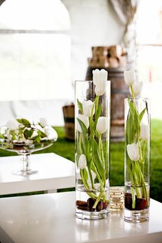 The dark-colored rocks work well with this all-white arrangement. To recreate, place rocks then add tulips (preferably of the same color) of differing heights inside a tall, slender vase.