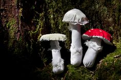 Trio of Amanitas - Hand Stitched Mushroom Soft Sculptures by fogandswell