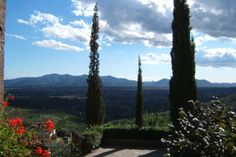 A beautiful, good, very panoramic winding up road brings you up to the hamlet overlooking the valley down as far as Lucca.