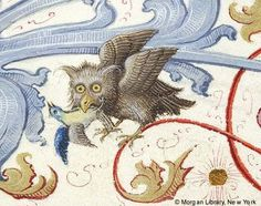 Owl, from the 'Geese Book' Gradual, made in Germany, 1507-10, via Medieval Manuscript Images, Pierpont Morgan Library, Geese Book (MS M.905). MS M.905 I, fol. 38v  http://utu.morganlibrary.org/medren/single_image2.cfm?imagename=m905.1.038vb.jpg=ICA000129215: