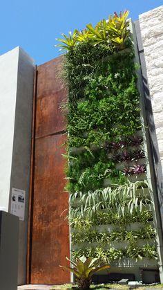 Terra Vida Paisagismo (Maceió-Al), cria Jardim Vertical de sol com Green Wall Ceramic