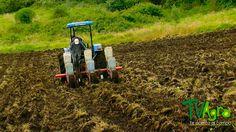 Conexiones: Capitulo 12: Ara y cosecha la tierra.