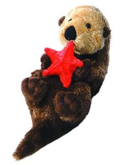 "8"" Otto the plush otter is holding a red starfish in his cute little paws and…"