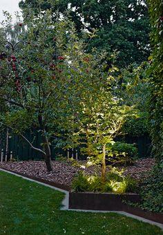 Æbletræer i haveuniverset