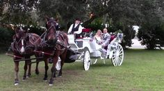 Saxon Manor Wedding, Horse Drawn Carriage, Country Wedding in ...