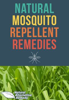 It's time to banish the bugs and put an end to one of summer's biggest bummers: mosquito bites. Here are 5 natural mosquito repellent recipes you can make at home. #nomoresummerbummers #naturalremedies #healthyskin