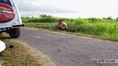 Ducks passing