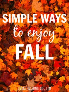 A great list of simple ways to enjoy fall. This will inspire you to create fall traditions of your own that you'll look forward to year after year!