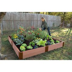 Frame It All X Raised Garden Bed In Sienna - Jardin Vertical Fachada Culture D'herbes, Vegetable Garden Planner, Vegetable Gardening, Building Raised Garden Beds, By Any Means Necessary, Pallets Garden, Pallet Gardening, Gardening For Beginners, Gardening Tips