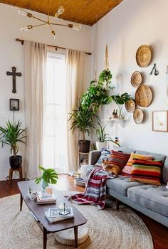 Plants clustered wood on walls grey couch colorful rug and pillows