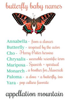 Butterfly Baby Names: Monarch, Mariposa, Yara - Appellation Mountain Cute Names, Unique Baby Names, Boy Names, Names Baby, Names Of Butterflies, Baby Girl Names Spanish, Logo Online Shop, Nature Names, Girl Names With Meaning
