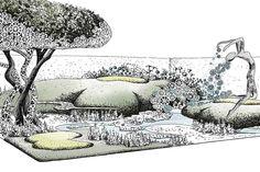 Find Nivaki – To Revive Garden at RHS Chelsea Flower Show 2016 Exhibitor Search / RHS Gardening