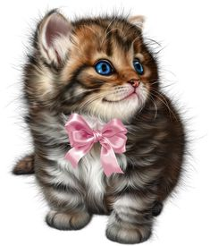 Cute Cats And Kittens, Kittens Cutest, Cute Baby Animals, Animals And Pets, Kitten Cartoon, Kitten Images, Cat Coloring Page, Cute Animal Pictures, Animals Images