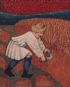 Das Bild zeigt deutlich, wie durch den Gebrauch der Sichel der Getreidehalm in der Mitte abgeschnitten wurde und somit die untere Hälfte auf dem Feld verblieb