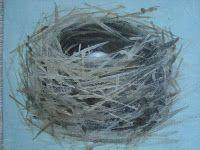 How to Paint a Bird's Nest tutorial
