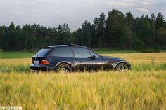 Black Z3M, darkened rear glass?