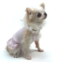 Shop where every purchase helps shelter pets! Oscar Newman Sheer Bliss Dress - Pink - from $62.95