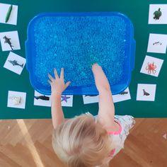 "Wunderperlen-Set ""Unter dem Meer"" – Höller Spiel Wonder pearl set ""Under the sea"" – Hell game Category: basteln This image. Sea Life Art, Slumber Party Games, Pearl Set, Pinterest Blog, Under The Sea, Montessori, Crafts For Kids, Preschool, Toys"