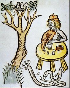 Theriac Hortus Sanitatis 1491