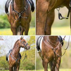Profi-Rider borsttuig met martingaal (deze is ook te verwijderen) zowel met de lus rond de singel te bevestigen als met de klipsluiting. Mooi afgewerkt, zeer zacht, onderlegd leer. Zwart/bruin Pony + Cob + Full Normaal €89,95 nu €39,95 www.limburgsruiterhuis.nl Horses, Animals, Animales, Animaux, Animal, Animais, Horse