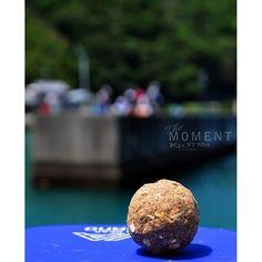【ku.3776f】さんのInstagramをピンしています。 《Fishing scene in the past. 何も釣れない楽しい一日。ヽ(;▽;)ノ #紀州釣り#ダンゴ#小浦漁港#和歌山#釣り#魚釣り#過去#紀州釣り#楽しい#風景#景色#海#海辺#空#きれい#美しい#fishing#sea#nature#instanature#instaphoto#instagood#landscape#awesome#nice#moment#fine#follow》