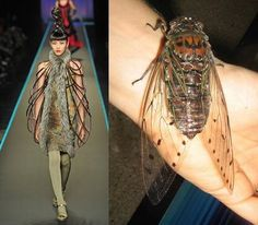 This look from Jean-Paul Gaultier's AW 2008 collection was inspired by a cicada Photo here. Fashion Design Drawings, Fashion Sketches, Couture Fashion, Fashion Art, Fashion Outfits, Fashion Figures, Mode Inspiration, Fashion Inspiration, Mode Style