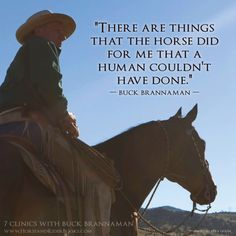 64 Ideas For Horse Training Quotes Buck Brannaman Rodeo Quotes, Equine Quotes, Cowboy Quotes, Equestrian Quotes, Equestrian Problems, Western Horse Quotes, Horse Love Quotes, Horse Sayings, Western Signs